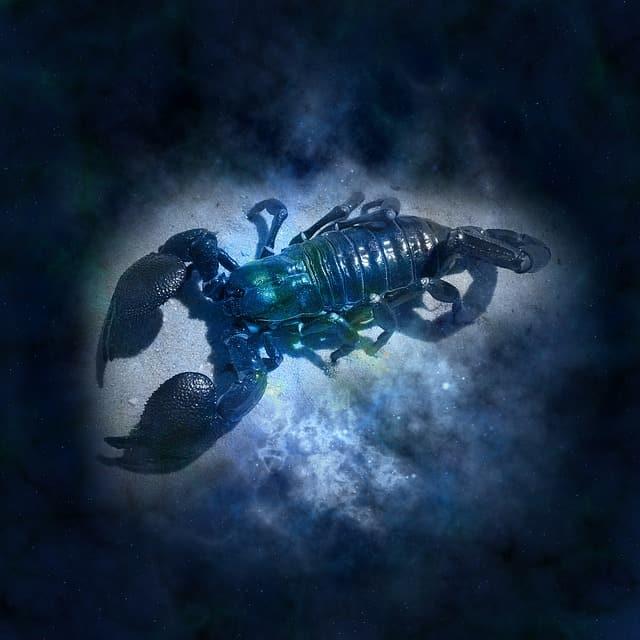 horoscope 644864 640